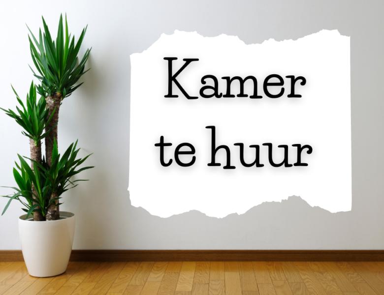 Hollanda'da Kiralık Oda Nasıl Bulabilirim ?